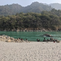 Aloha On the Ganges, Rishikesh - A Review
